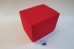 Bandscheibenwürfel mit Bezug Rot